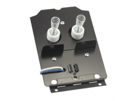 Electronic Ignitors